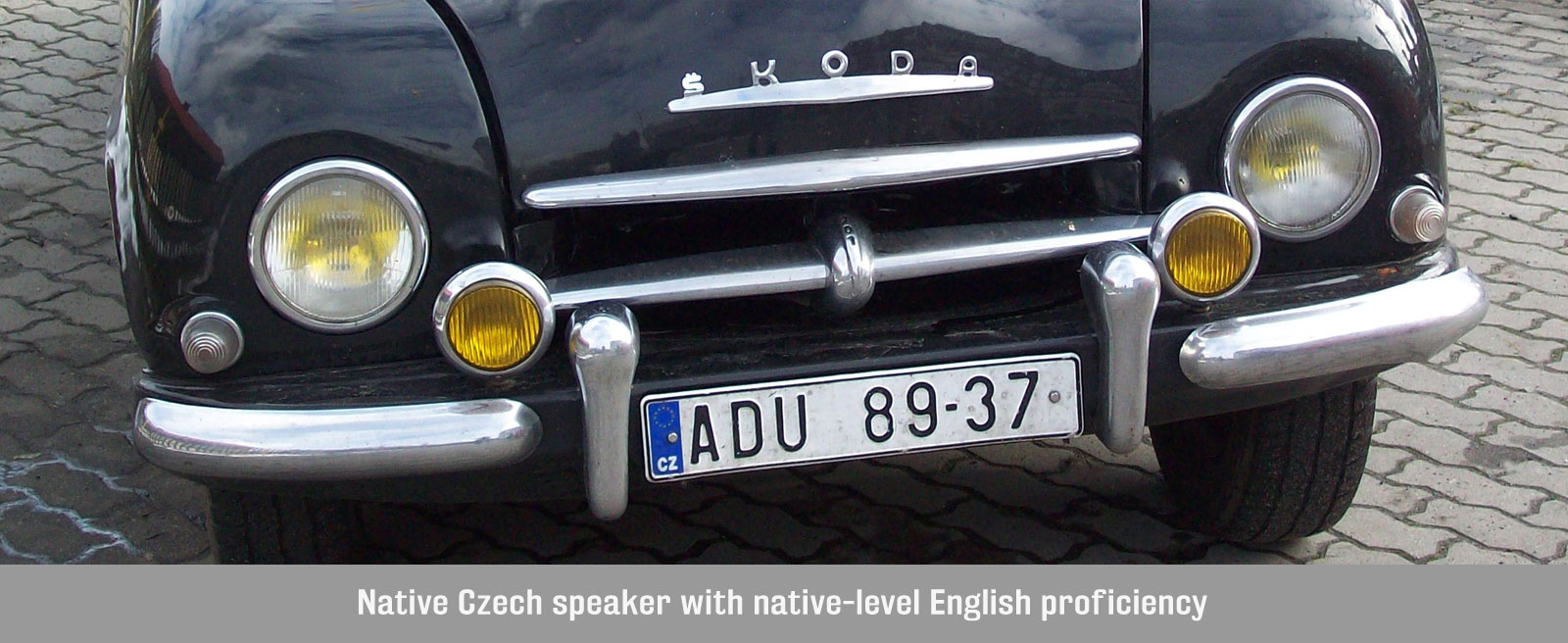 Czech Language Services